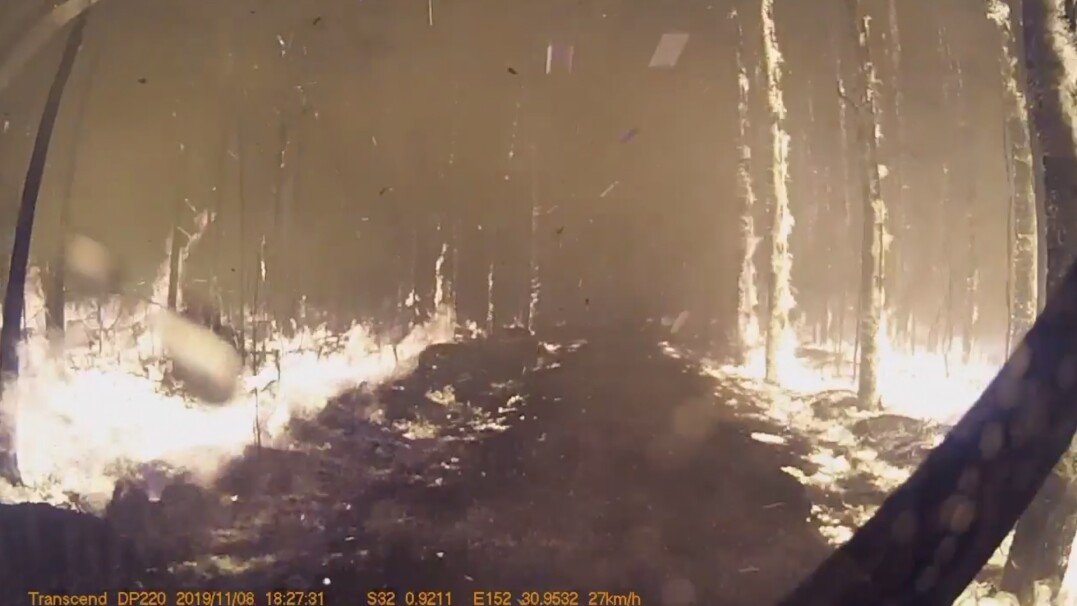 Pośród płomieni i palących się drzew. Dzielni strażacy jadą do pożaru buszu
