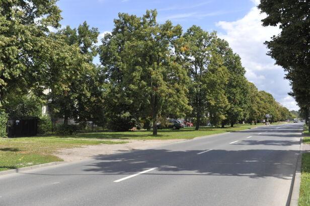 Tak obecnie wygląda ulica Chrościckiego ZDM