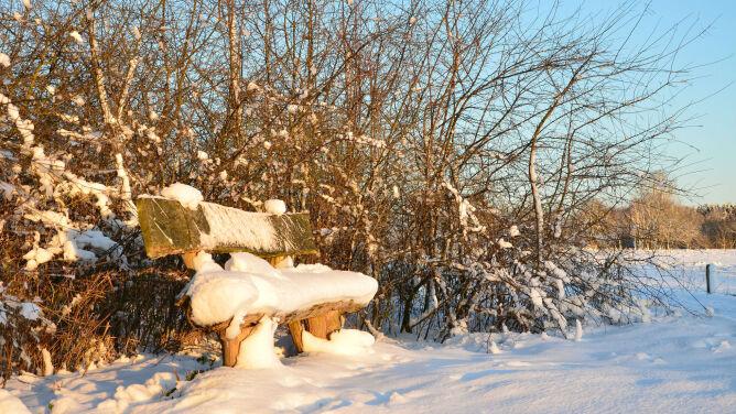 Prognoza pogody na dziś: rześko i pogodnie. Miejscami dopada śniegu