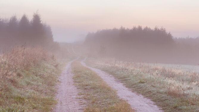 Na południu mglisto. Lokalnie widać tylko na 300 metrów